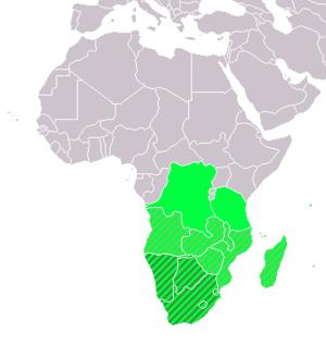 Südafrikanische Küche   Kategorie Sudafrikanische Kuche Koch Wiki